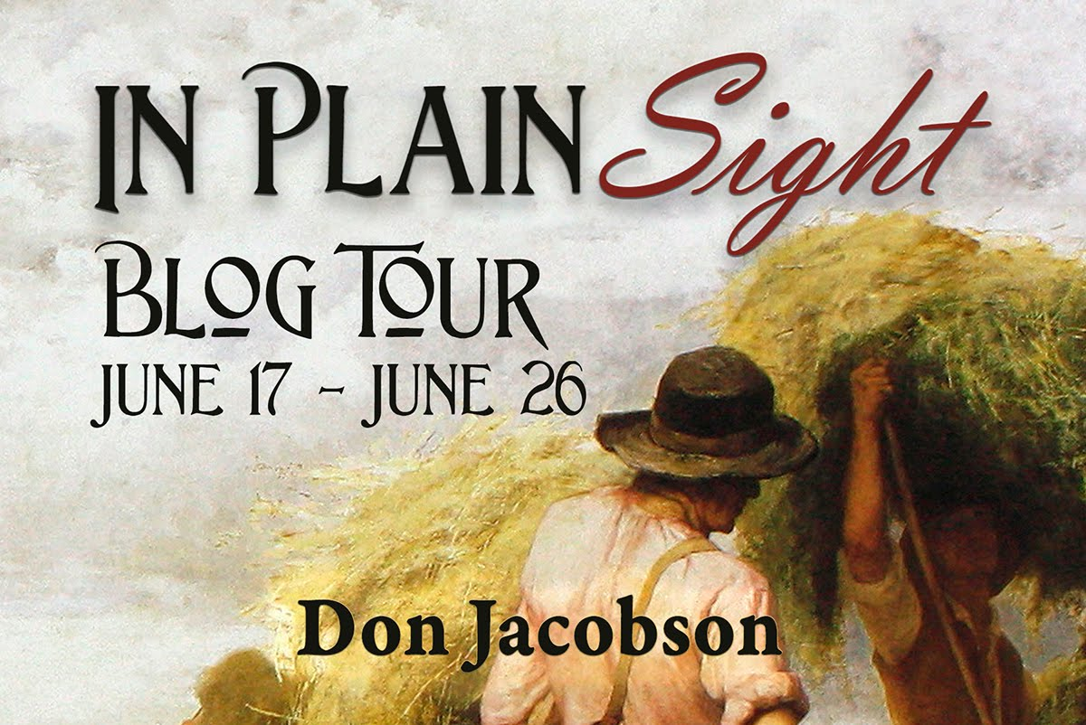 In Plain Sight by Don Jacobson