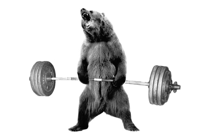 Image result for bear complex
