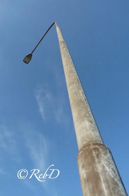 En hög lyktstolpe ur grodperspektiv. foto: Reb Dutius