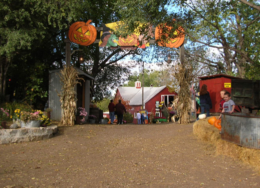 Pumpkin patch las vegas