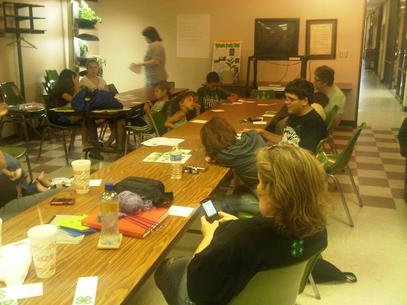 Robeson County 4-H: Getting Crafty About Planning