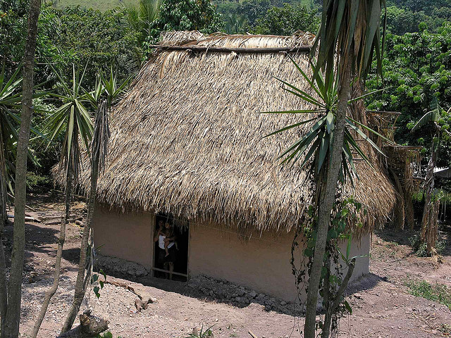Thatched roof home - casa con techo de palma; cerca del ...