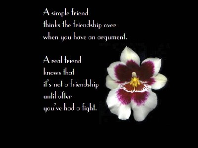 friendship quotes. Negative Friendship Quotes