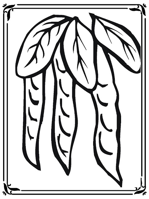 Pea Coloring Pages