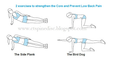 Two Exercises to Prevent Low Back: The Bird Dog and Side Plank