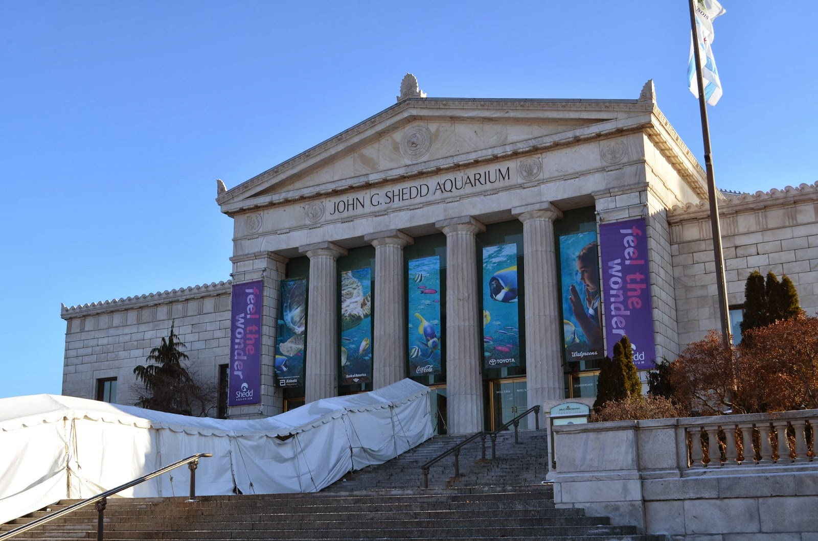 The beautiful Shedd Aquarium in Chicago