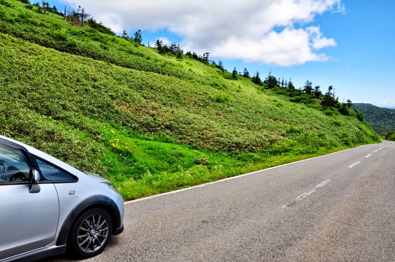 To the places various by car: ...