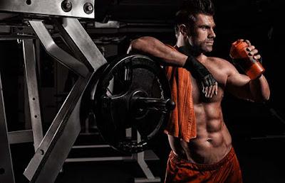 glutamine bodybuilding