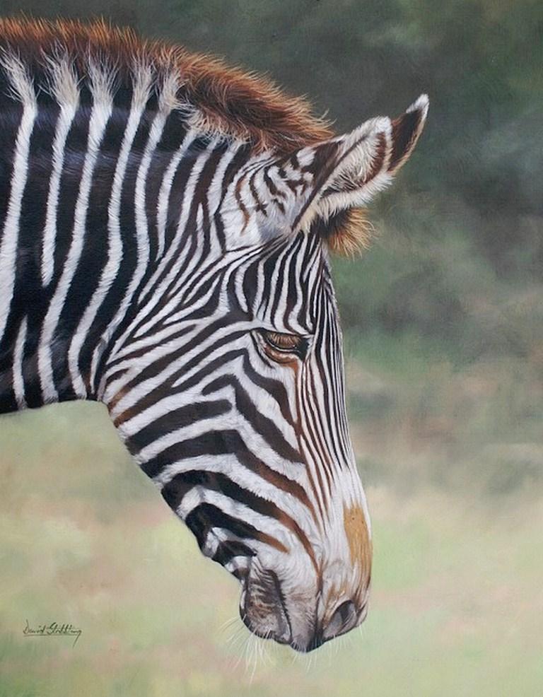 Cuadros de animales oleo pintura cebras oleo sobre lienzo - Cuadros de cebras ...