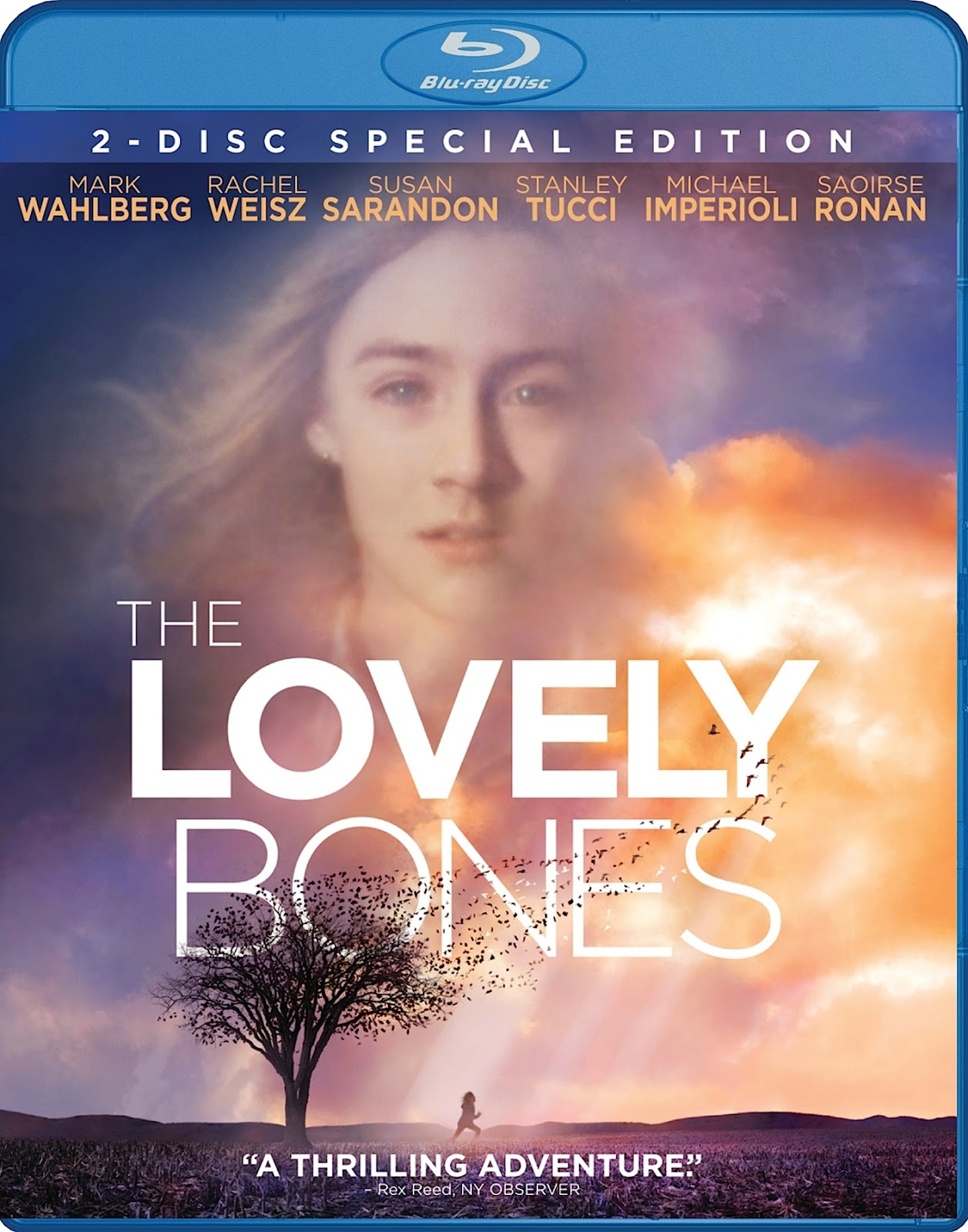 the lovely bones detailed quote synopsis Note: the book spoiler is always looking for a nice little synopsis (including the ending) of any current best selling book.