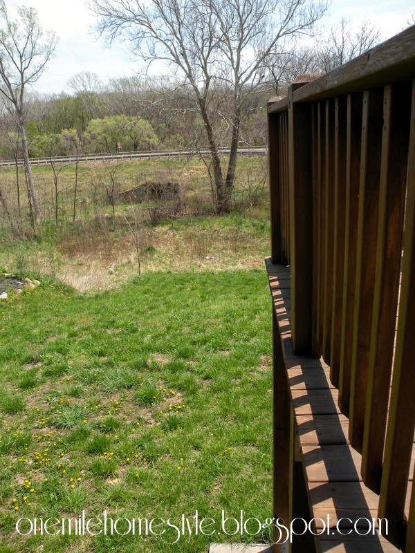 Backyard Hill - View from the deck