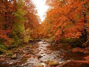El otoño, llega. agroturismo mari cruz oferta oto