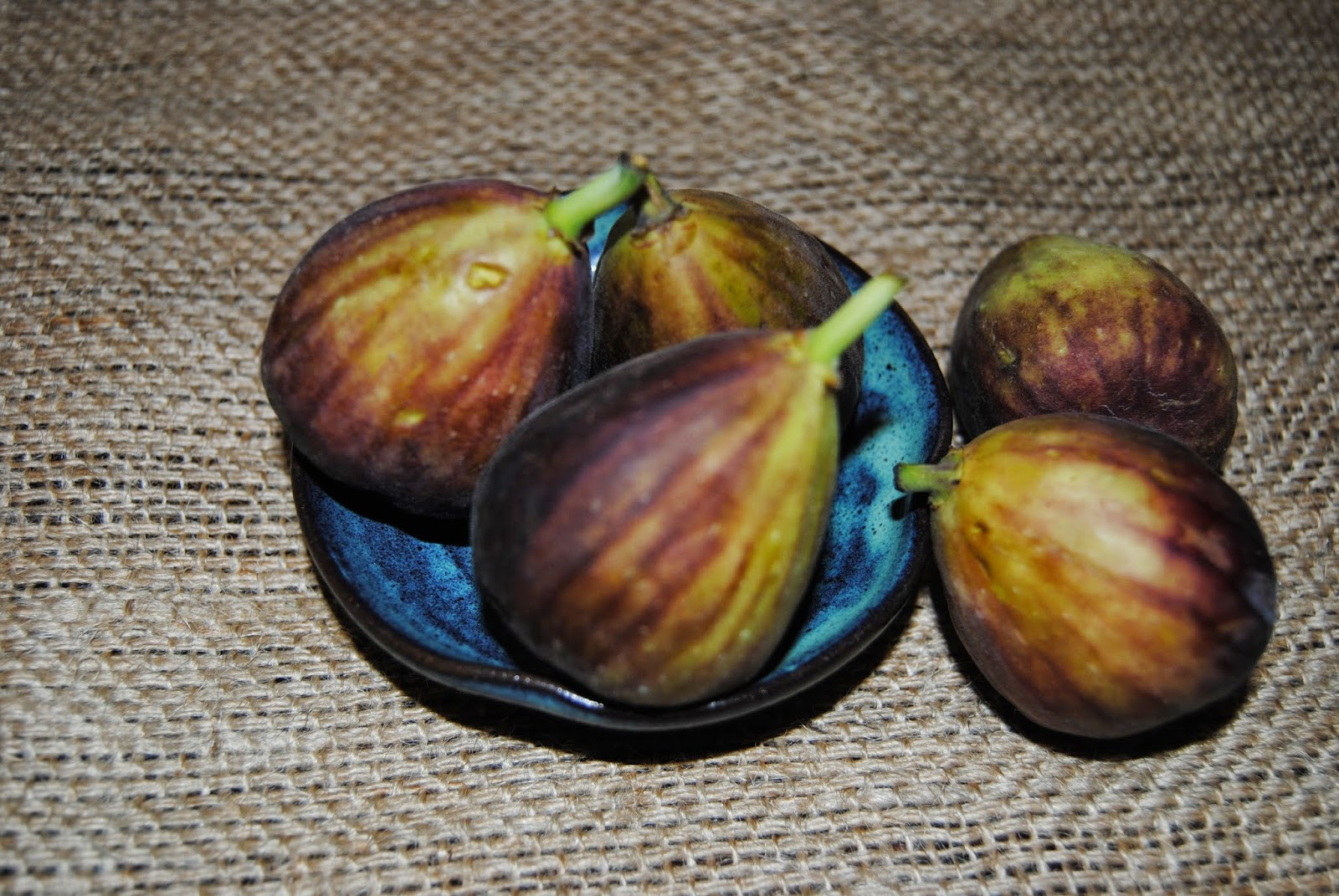 delicious salad of roast duck+figs