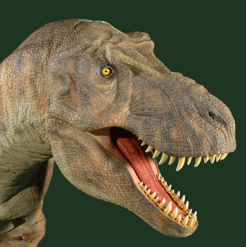 R Dinosaurs Alive Discover Docklands: Th...