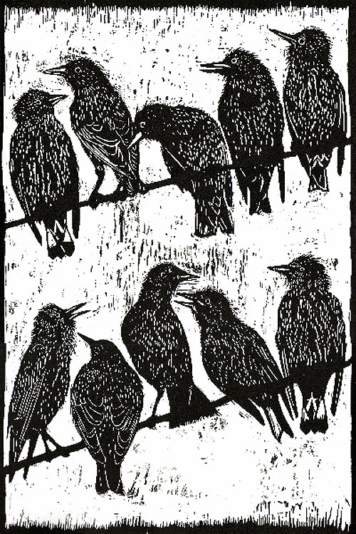 woodcuts by ian macculloch