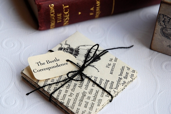Image of my epistolary artist's book.