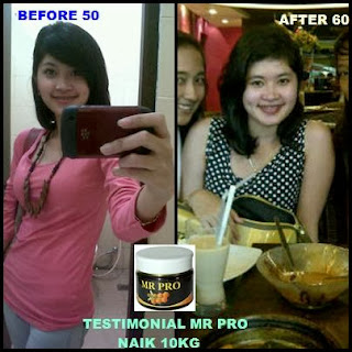 "Penggemuk Badan Alami (Madu, Royal Jelly & Propolis ""MR. PRO"")"