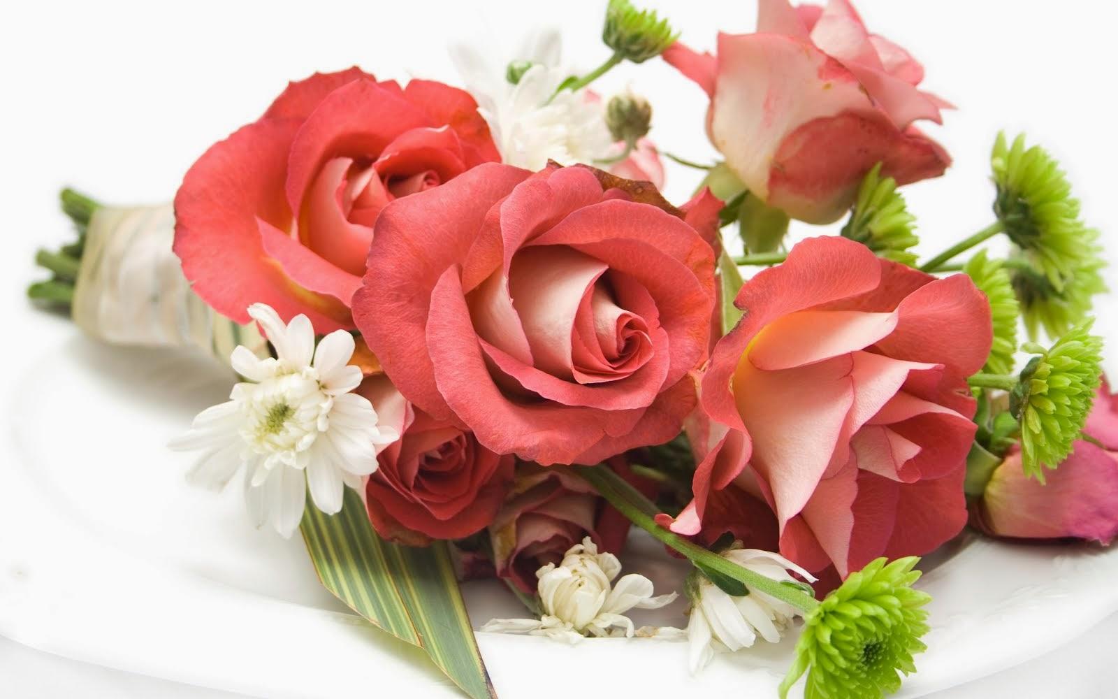 Rosas ... Sewm espinhos só Amor