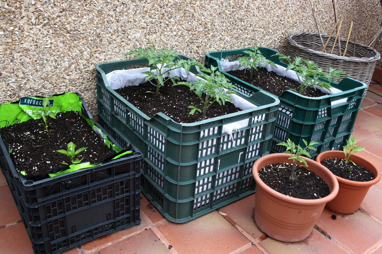 Negaos un huerto urbano en tu terraza con materiales for Como iniciar un vivero en casa