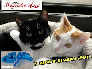 Magnetic Aura Si Meoww ~~~