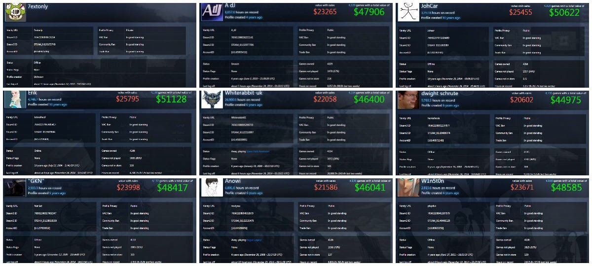 TOP 10 Rich Accounts Collector Games Steam