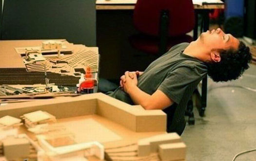 Wallpapers Download: Funny Pictures Of People Sleeping On ...