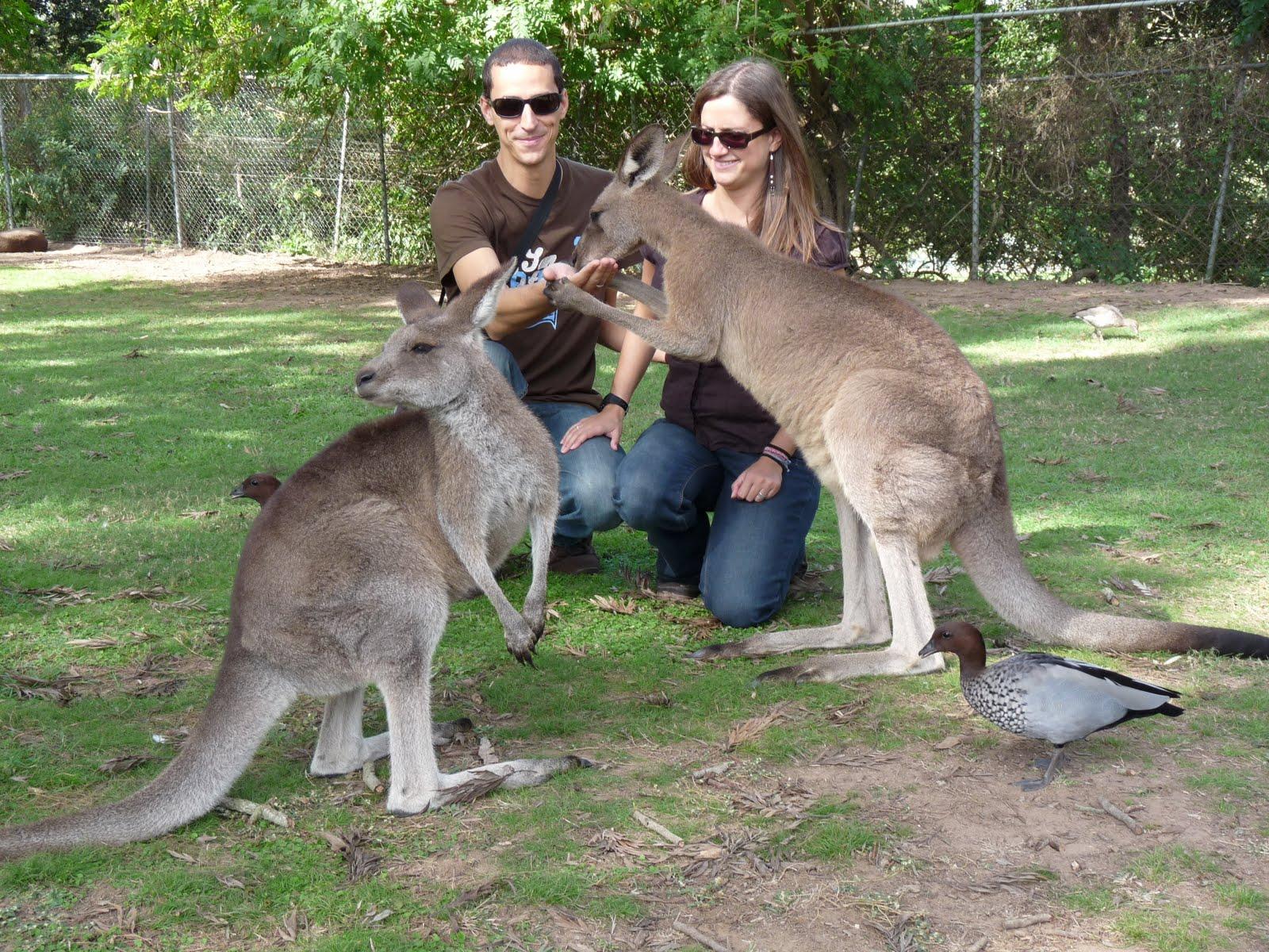 Sidney, Australia, vuelta al mundo, round the world, La Aventura de Pablo y Elena