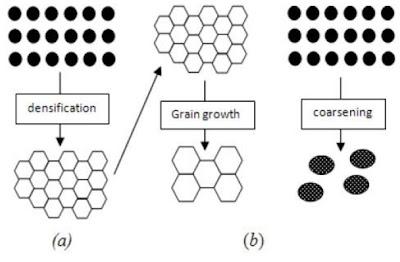 (a) Densifikasi diikuti dengan pertumbuhan butir (grain growth), (b) coarsening