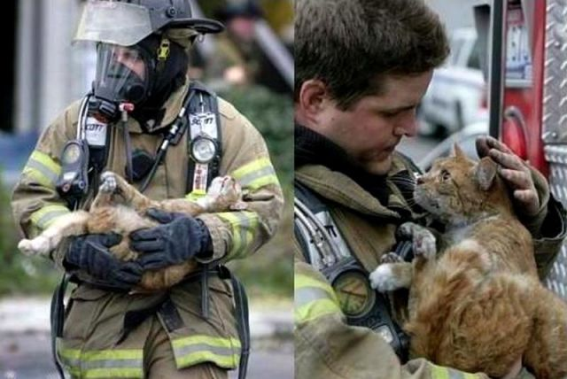 12 Pics That Will Restore Your Faith In Humanity!