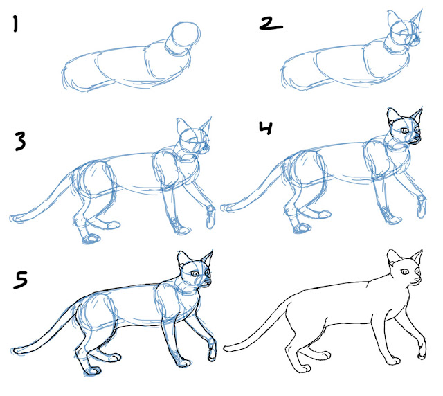 How to Draw a Cat Standing