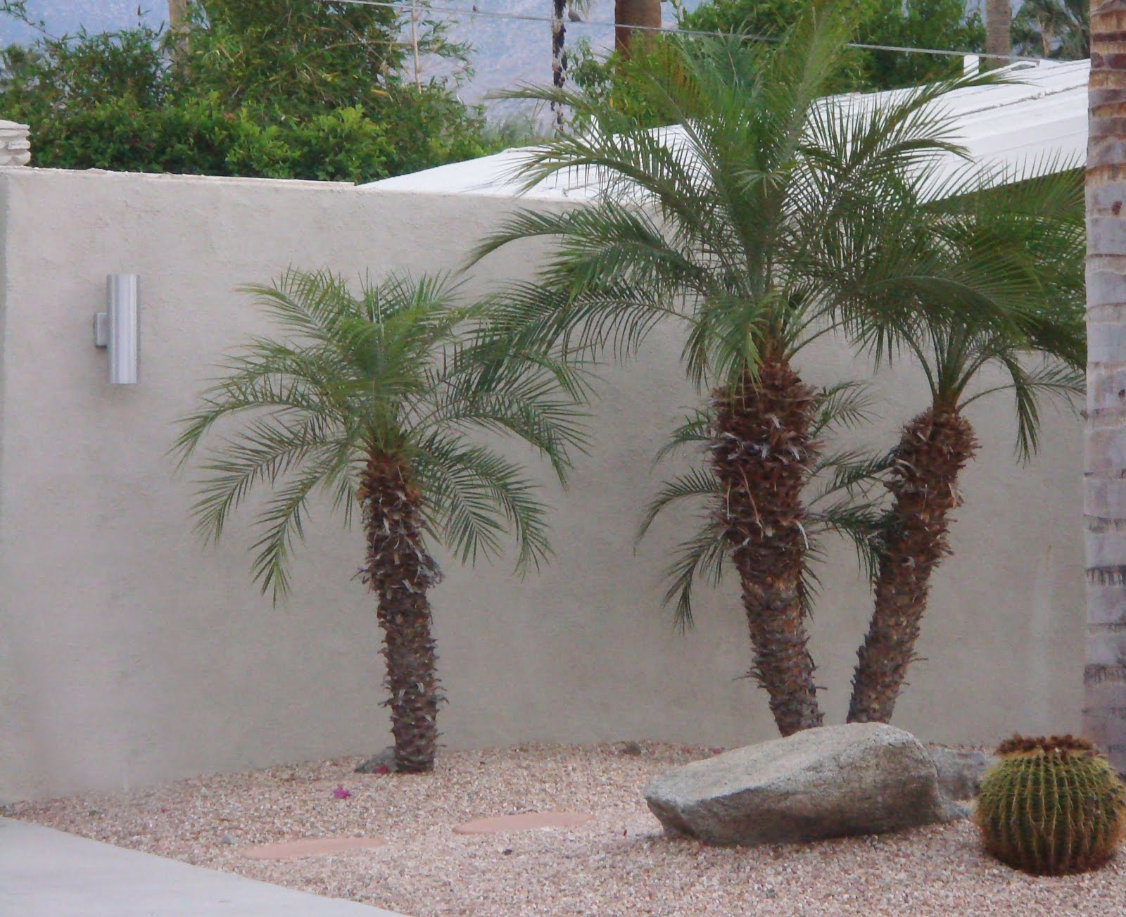 Mid Century Modern Outdoor Wall Sconces : Mid Century Modern Wall Sconce Palm Springs modern design by moderndesign.org