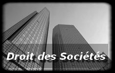 Avocat à Auxerre, Julie Scavazza, Droit des Sociétés