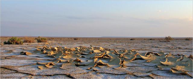 Казахстан, Мангистауская область, плато Устюрт.