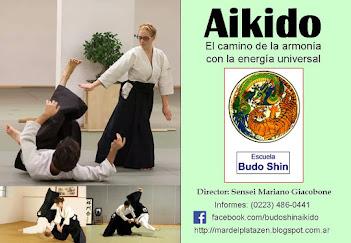 Aprende Aikido