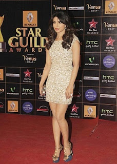 Star Guild Awards (2013) HDRip Watch Online Free Download