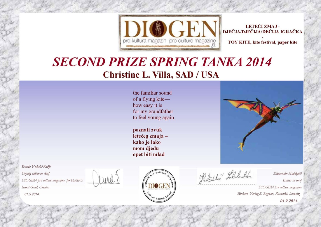 2nd Place, Diogen 2014