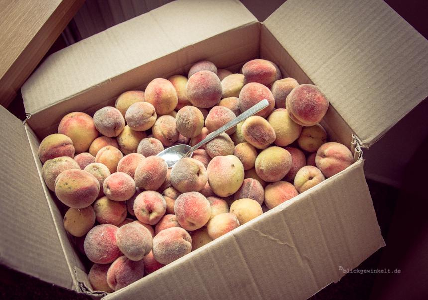 Kleine Pfirsiche, Eigenernte
