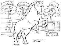 Gambar Kuda Berdiri Untuk Diwarnai Anak