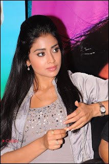 Shriya Saran Latest Pictures at Pavitra Movie Press Meet   0007