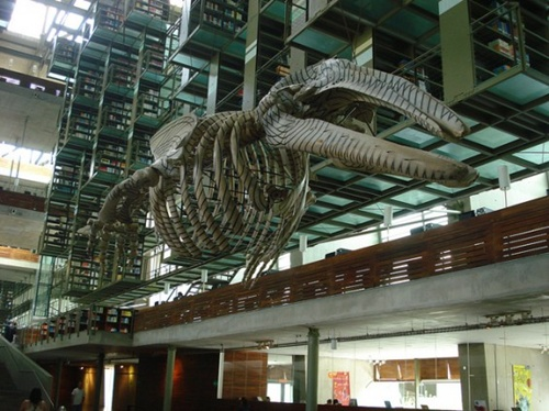Jose Vasconcelos Library, Mexico
