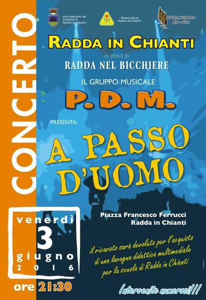 P.D.M: IN CONCERTO