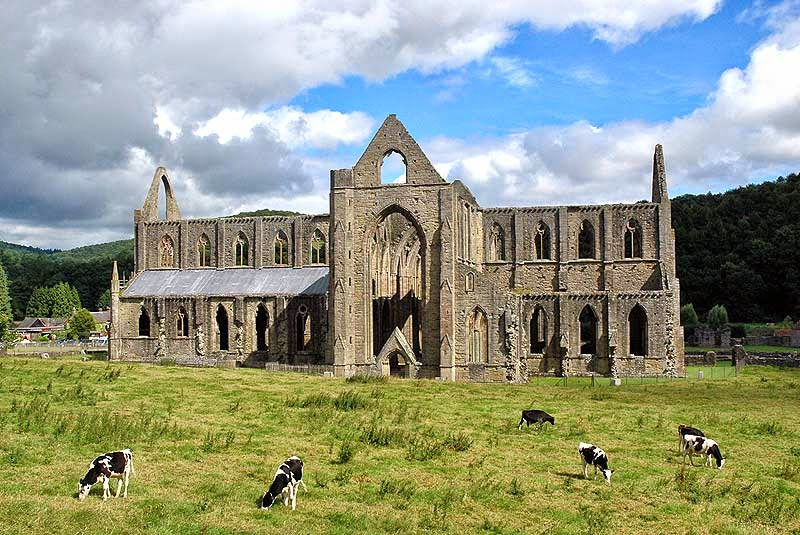 tintern abbey pastoral Tintern abbey by william wordsworth: summary and critical analysis the poem lines composed a few miles above tintern abbey is generally sportive wood, pastoral.
