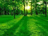 Zoom Image Hover Image : Gambar Membesar