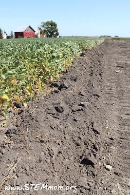 Soil preparation for Oil Pipeline: Barn and Beans STEMmom