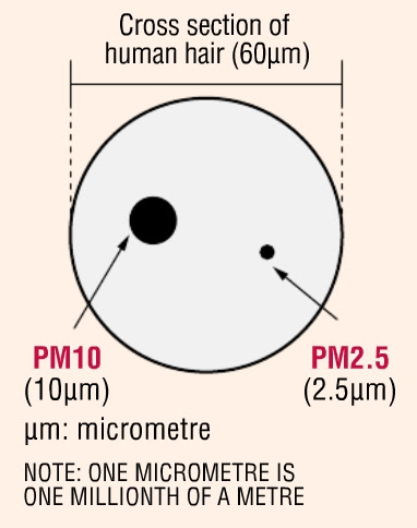 Particulate Matter (PM) are grad of size<br>PM2.5 (2.5µm) & PM10 (10µm) compared to a 60µm diameter hair.