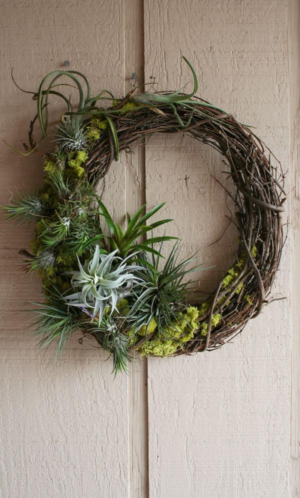 Tillandsia wreath 2