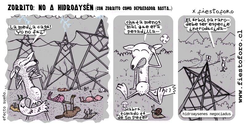 Zorrito culpeo contra hidroaysén