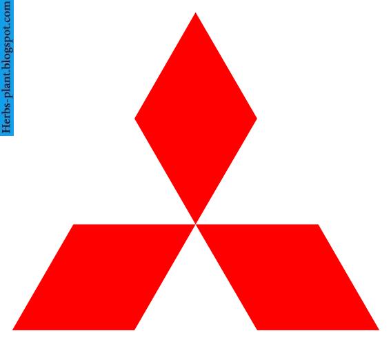 Mitsubishi evolution car 2013 logo - صور شعار سيارة ميتسوبيشى ريفلوشن 2013