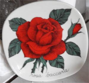 Ruusuja, ruusuja
