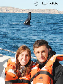 Whale watching for our guests in Valdes Peninsula